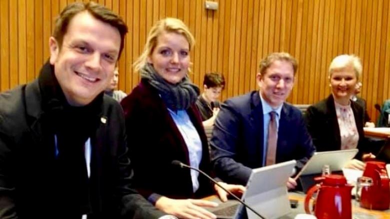Wirtschaftsausschuss